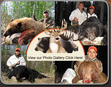 Bear Hunting Photo